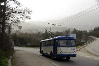 Crimea trolleybus Škoda 9Tr19 5502_20100221_355