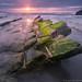 Green sunset by Juan C Ruiz