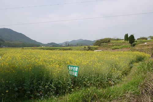 P1320666