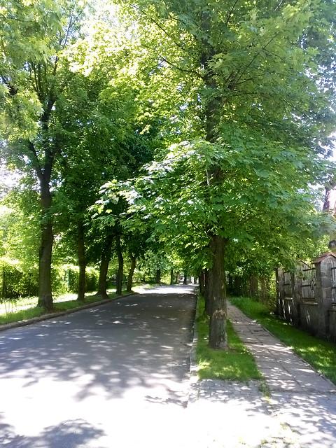 street view. Lviv, Ukraine