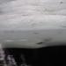 Small photo of Below Below & Above Water