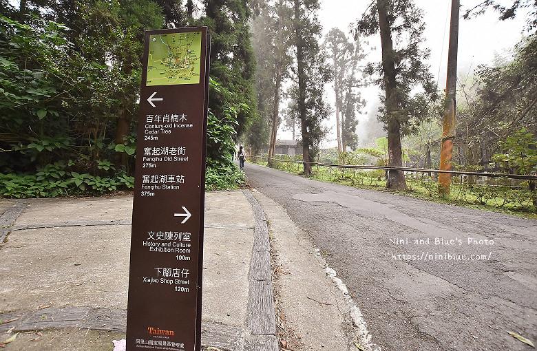 台灣好行嘉義阿里山奮起湖高蕾雅21