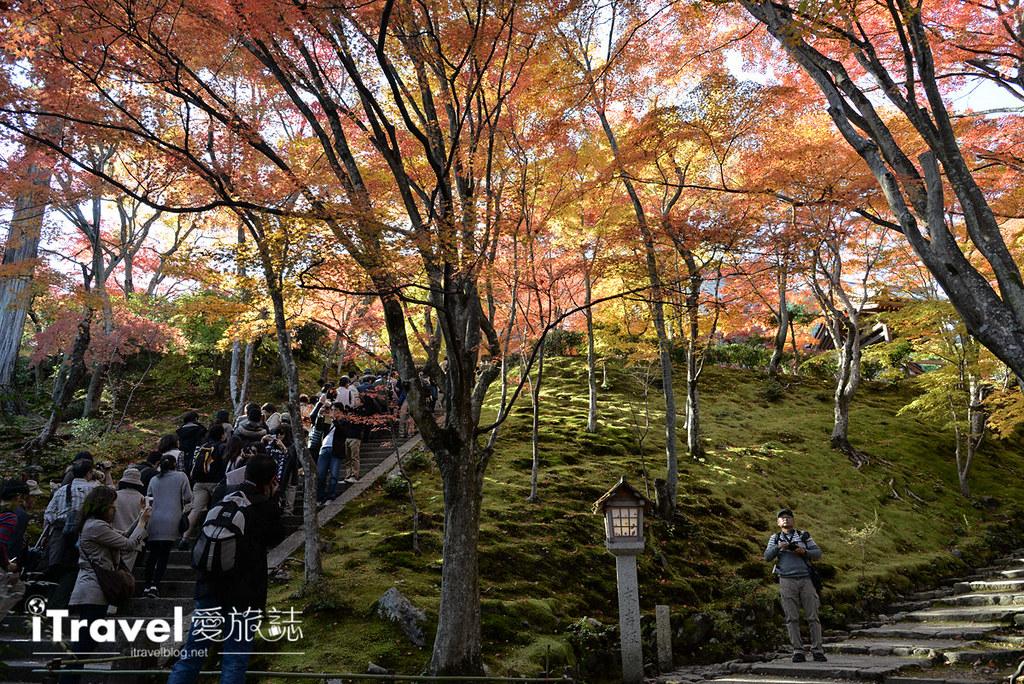 《京都赏枫景点》岚山常寂光寺:枫华正茂引络绎不绝观赏人潮,值得二访的名所。