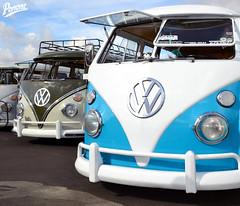 VW Bus Lineup