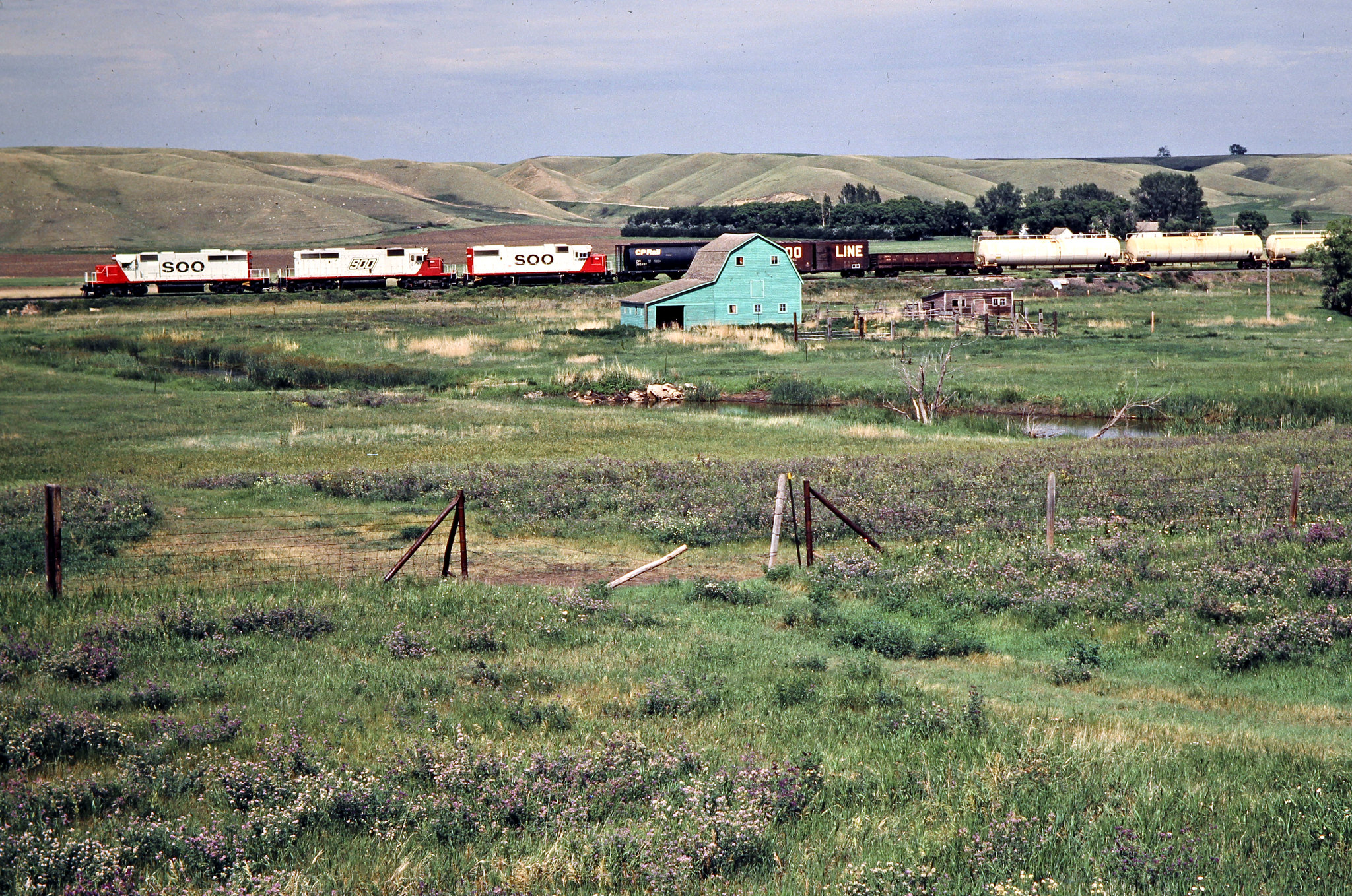 Singles in donnybrook north dakota