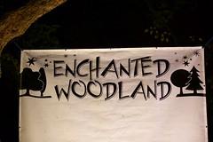 Syon Park - Enchanted Woodland Walk - 2016