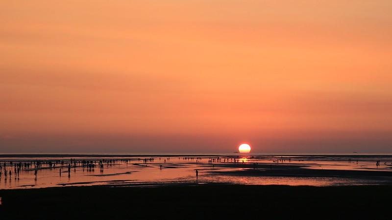 Gaomei Wetlands 高美濕地