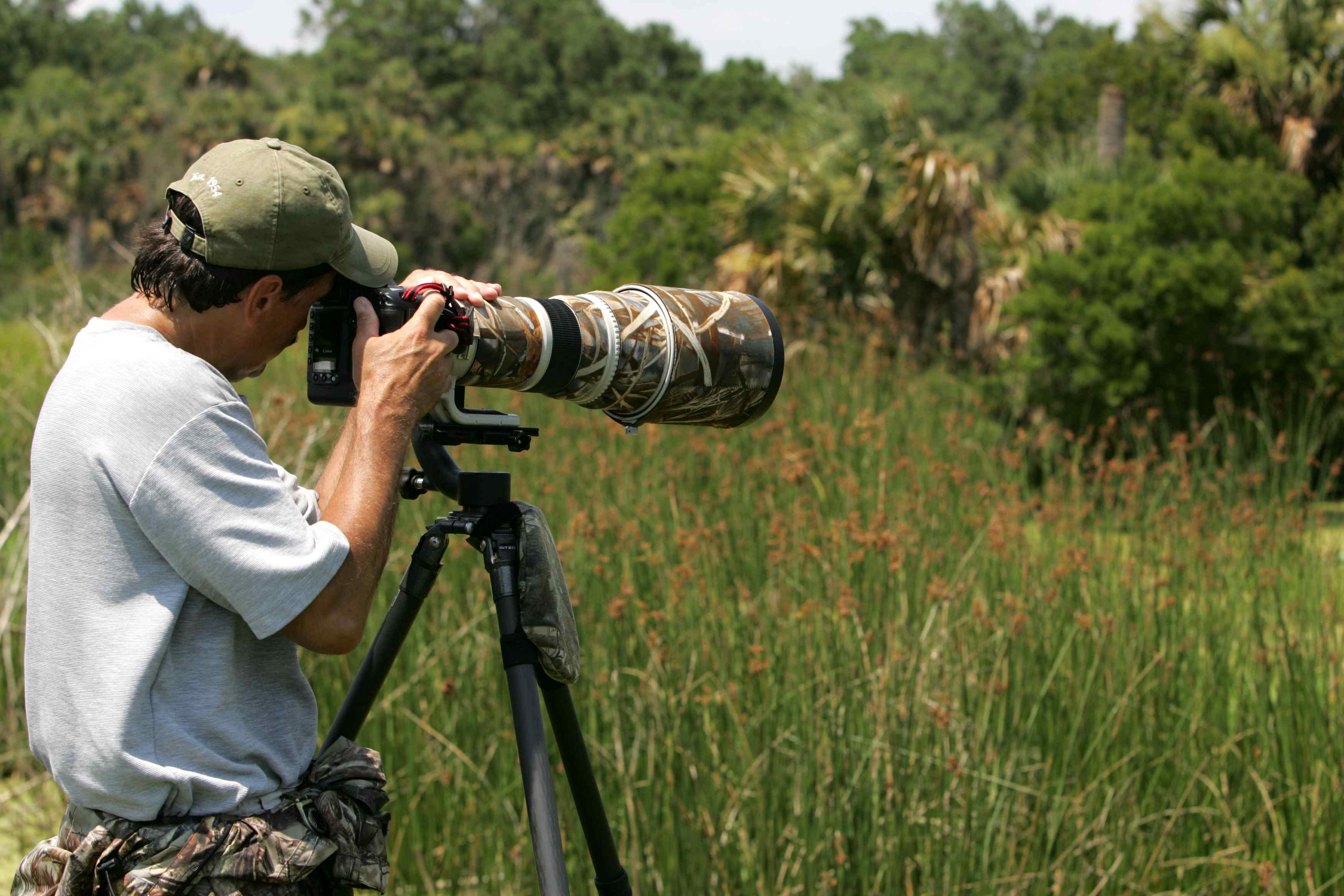 वाइल्डलाइफ फोटोग्राफी में करियर