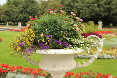 overflowing planter