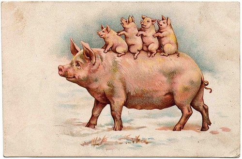 vintage, pig, greeting card, card, felicitation, pink pig,