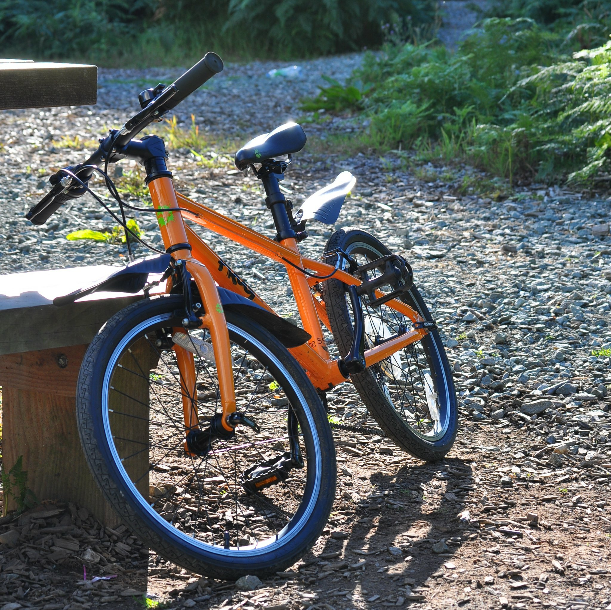 """Review of the Frog 55 quality kids bike with 20"""" wheels"""
