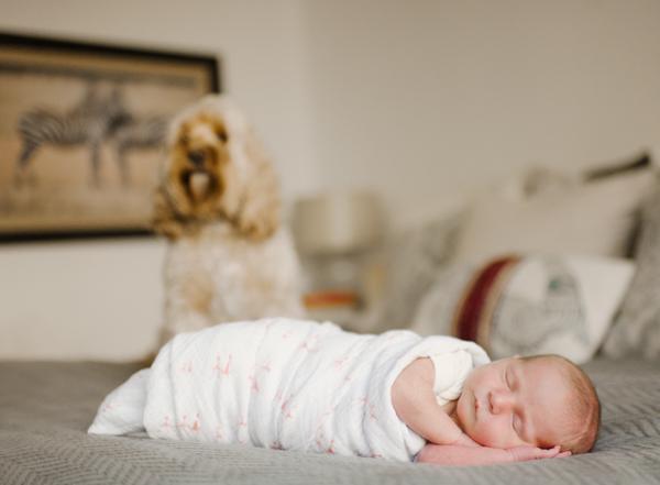 RYALE_Jersey_Newborn_-1