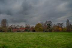 View around Pulpit Hill , Whiteleaf Buckinghamshire
