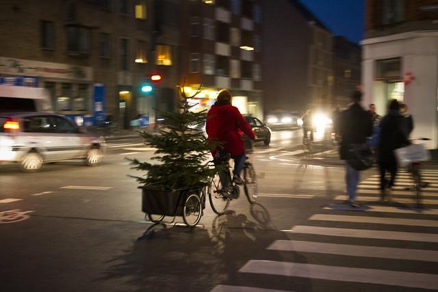 Heidis Christmas Tree_3