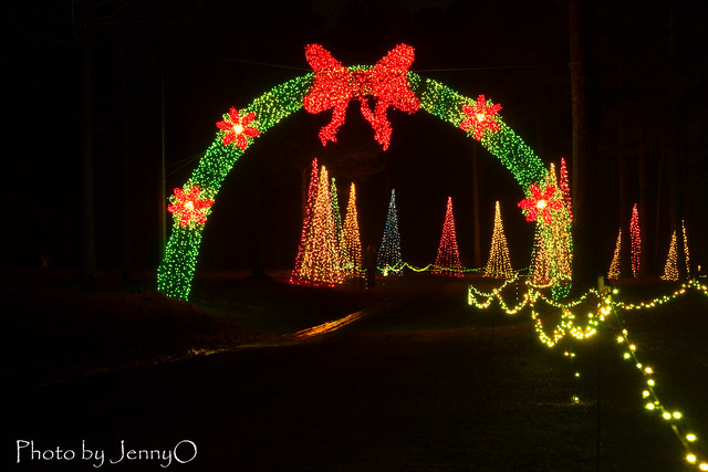 Lights of the South