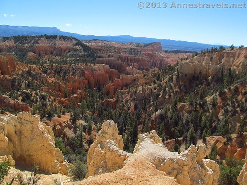 Near Fairyland Point on the Fairyland Trail, Bryce Canyon National Park, Utah