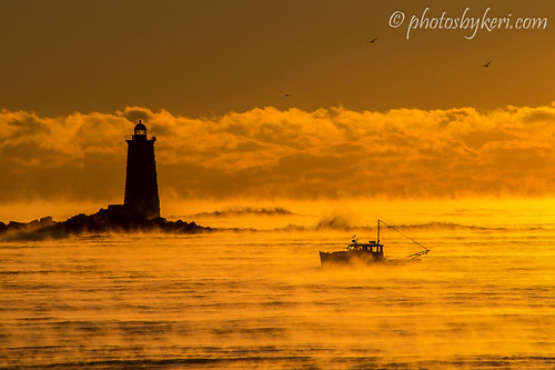 The Magic And Mystery Of Sea Smoke - Explored!!! by KAM918