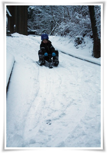 11 snowracer