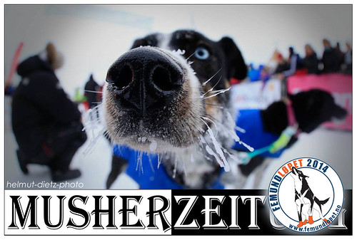 Femundlopet-Musherzeitung