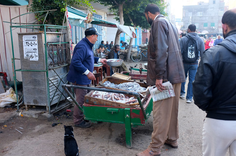 Ras El Bar market 4