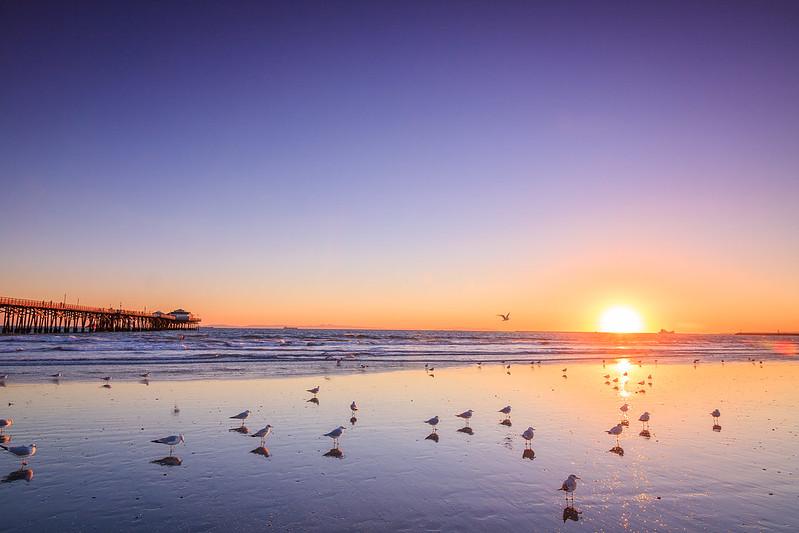 Seal Beach-0704