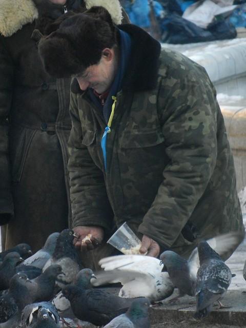 Ни один голубь не останется голодным