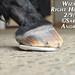 Wizard's New Rocker Shoes