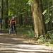 Profitez du secteur boisé du Circuit des Traditions en famille. / Having fun cycling through the wooded section of the Circuit des Traditions with your family.