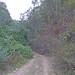 OAX14_00909a por jerryoldenettel