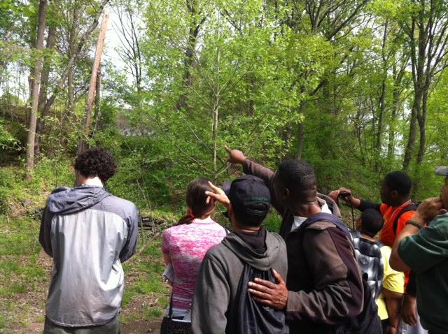 TCP Bird Walk & Spring LYP Day 2014