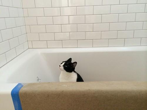 tehno tub architec me duravit tubs happy store drain