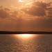 Saylorville Sunset by Dawn Martin