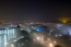 Foggy Sweetlake