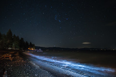 Orion over Lake Tahoe