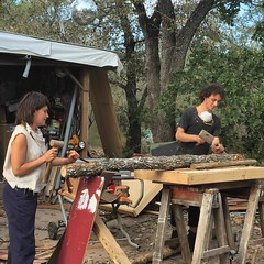Ari and Bethany of Doors Unlimited Denmark a post oak tree to use in their sculpture. #habitablespaces #sustainableliving #artistresidency #doorsunlimited #naturalbuilding