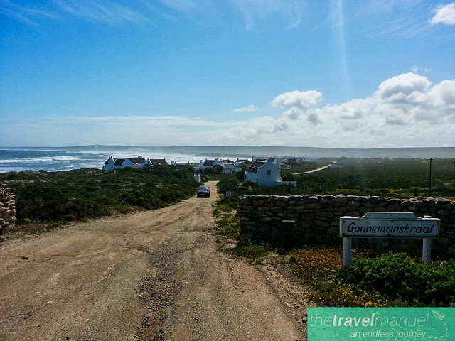West Coast National Park and Jacobsbaai 2013-18