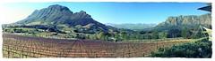 Weinregion SA