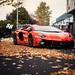 Lamborghini LP700 Aventador DMC ADV1 by srautogroup.com
