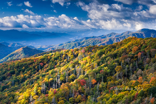 blue autumn trees sky orange sunlight mountains color colour green nature beauty grass yellow forest season outdoors countryside nationalpark colorful day natural cove tennessee country fresh hills clear southern national valley idyllic smokies appalachia cades greatsmokymountainsnationalpark hiway441