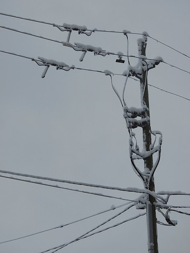 snowy wires