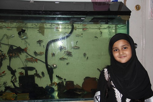 Marziya Shakirs New Fish Tank by firoze shakir photographerno1