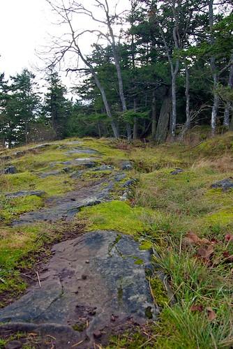 Ruckle Provincial Park