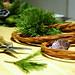Advent | 14. Pine wreath