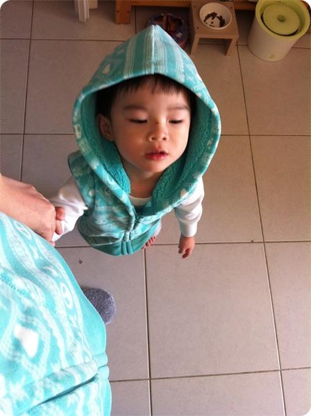 Fleece印花連帽背心(湖綠)