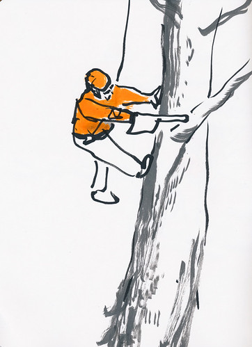 January 2014: Tree Cutters