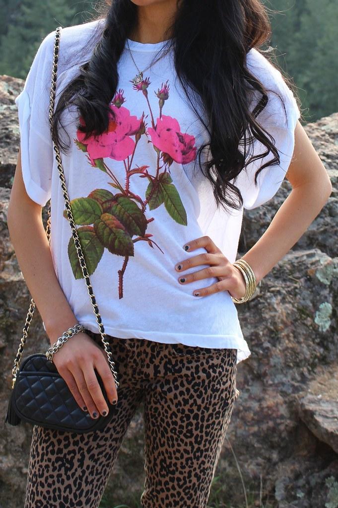 Wild Rose 6.