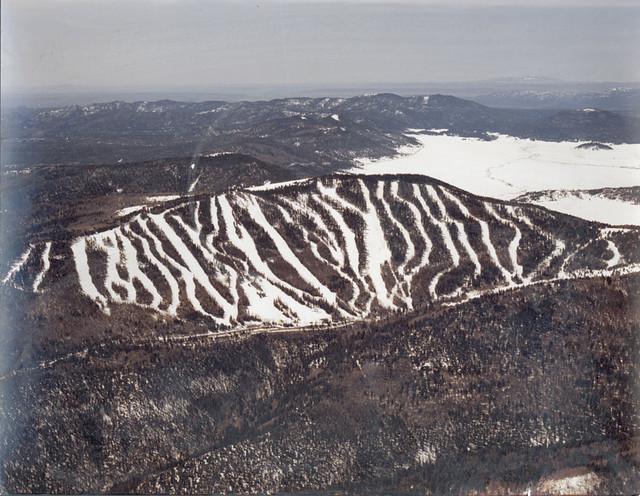 Pajarito Mt.