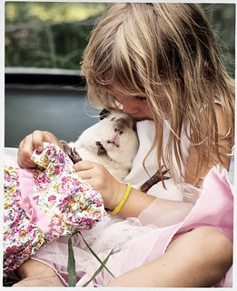 Little girls and guinea pigs  #1 of 4