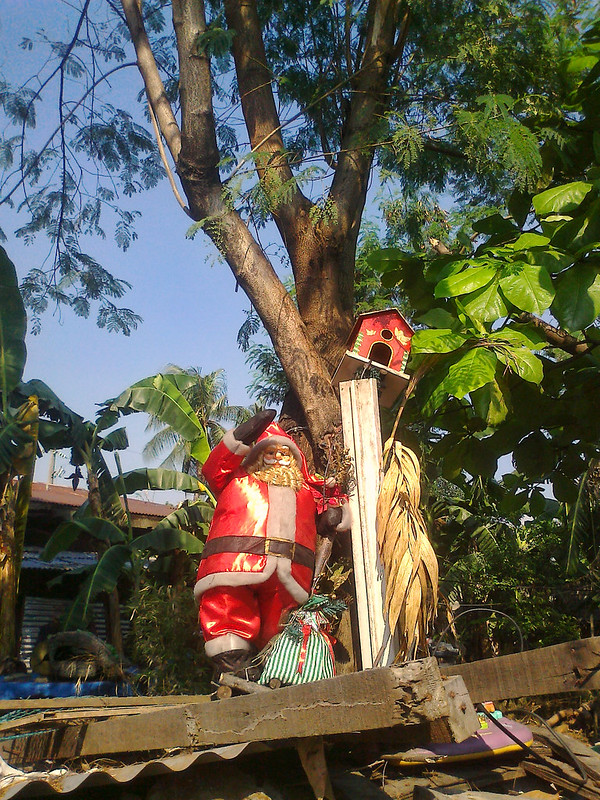 santa and bird house bougainvilla street mindanao avenue 051514