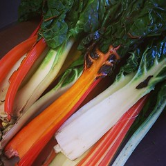 Rainbow chard going on the menu today #seasonal #chefs